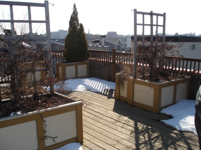 Rooftop deck of a Boystown 3 bedroom 2 bath condo