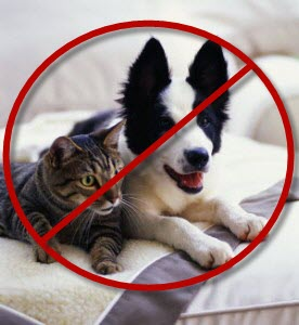A few Gold Coast condos don't allow pets