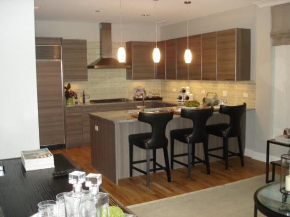 Chicago Luxury Apartment Kitchen