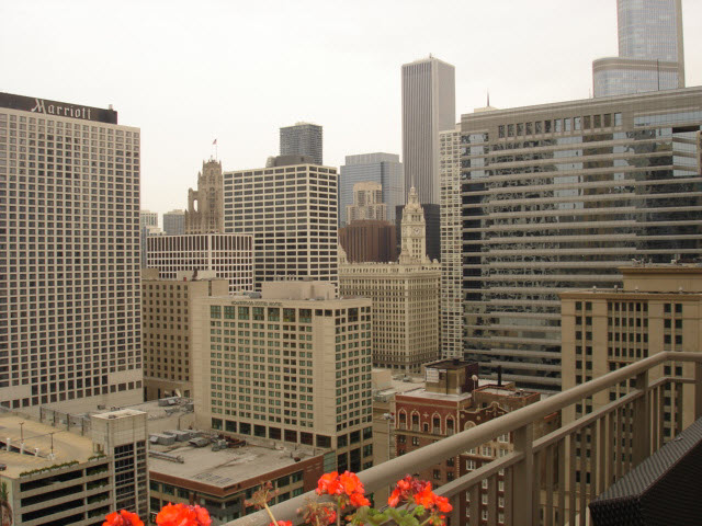 Southeast View From a Penthouse Terrace Photo