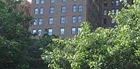 The Mayfair Condominiums Photo